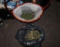 Schwytani za narkotyki w Markach